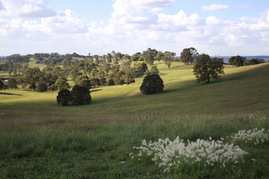 Mount Annan, with it\'s rolling fields and lush trees.