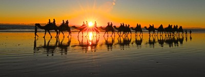 Riding Camels on Sunset