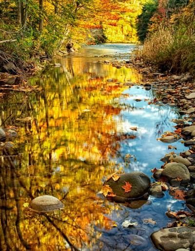Espous Creek