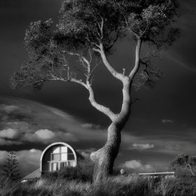 Tree and House Carrum Victoria Australia, shot from Carrum Beach foreshore.