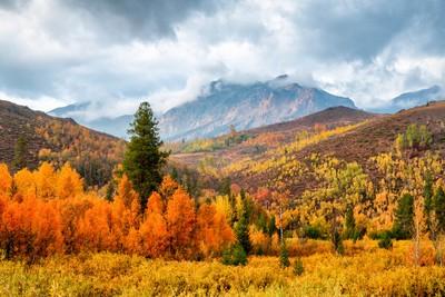 Idaho In Fall