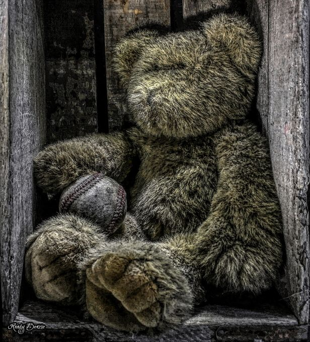 The Bench Warmer by randybenzie - 300 Toys Photo Contest