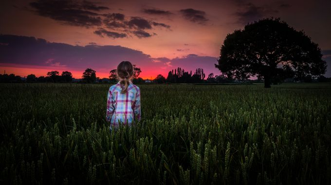 Bulkington Corn Fields by karlredshaw - Life And Freedom Photo Contest
