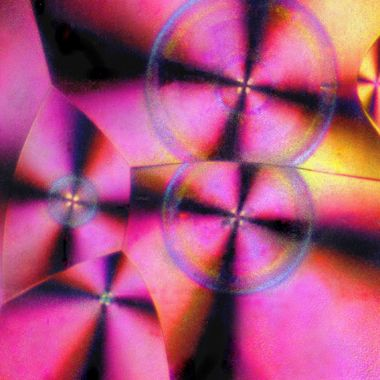 Vitamin C crystal. Polarized light. Shot on homemade opitical bench with 4x5 camera. Flash.