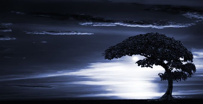 Tree with Moon by RobertoSpotti - Moonlight Photo Contest