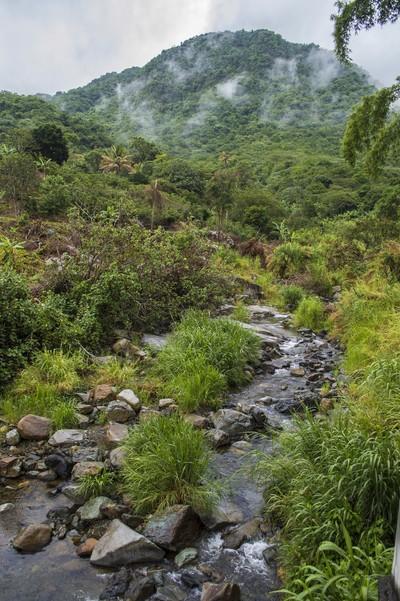 Jayuja, Puerto Rico Mountainside View