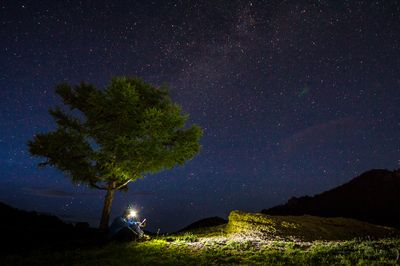 Stars in Mongolia