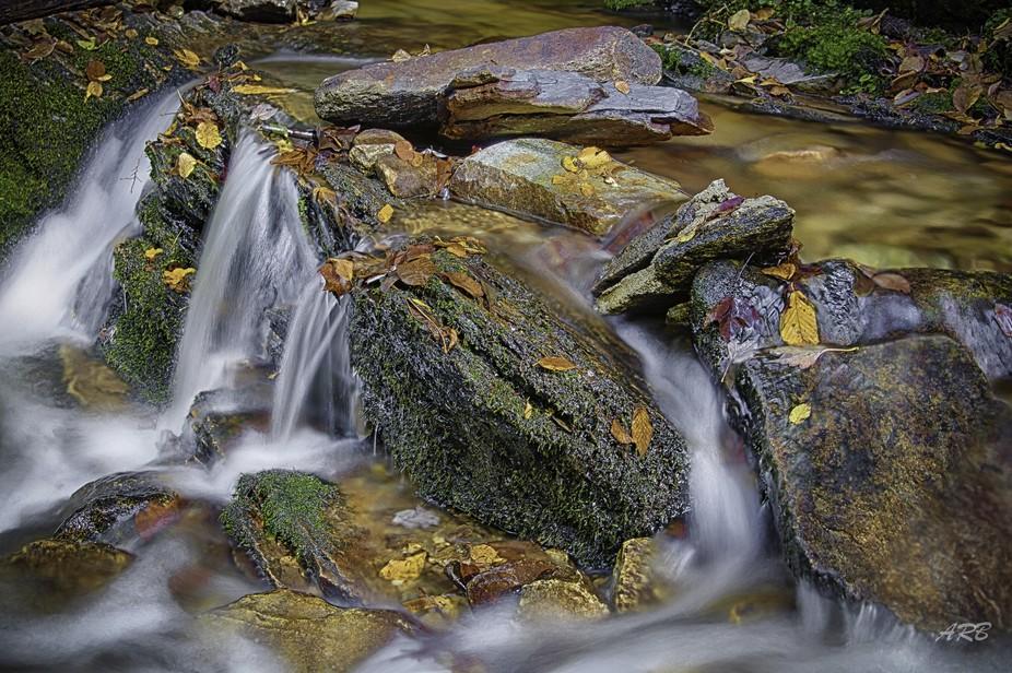 Blue Ridge Stream