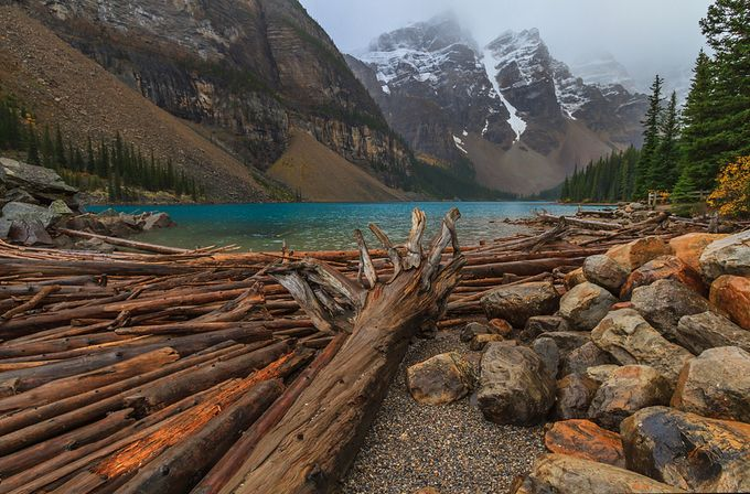 Lake Moraine by patrick9x9 - Fallen Trees Photo Contest