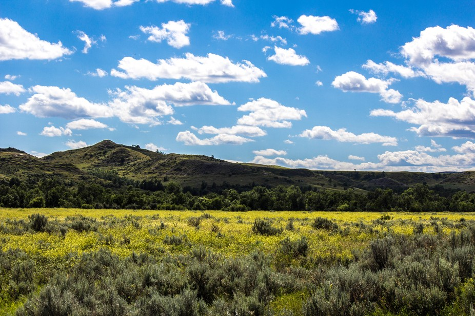 A great view of the Theodore Roosevelt National Park.  Nature at its best!