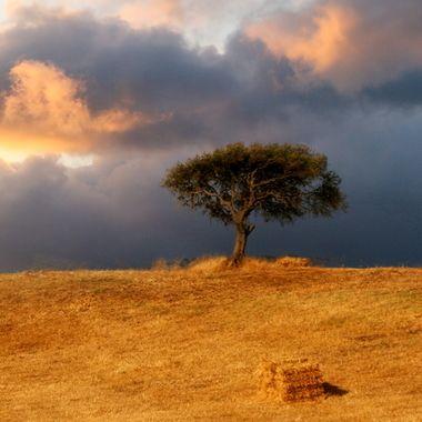 Sun down Andaluzia