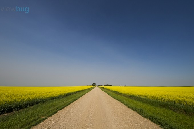 The Long Road by windycorduroy - Composition And Leading Lines Photo Contest