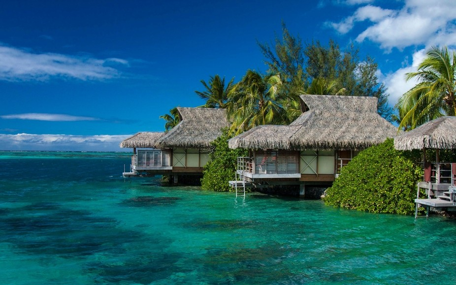 Every time I look at this photo I want to come back to beautiful Moorea island. The turquoise dee...