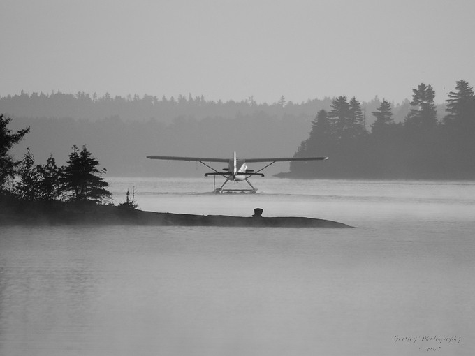 Taken with Nikon D50 using AF-S Nikkor 55-200mm 1:4-5.6 G lens on Lake Kipawa in Quebec.  Resized and converted to black and white using onOne Perfect Photo Suite 8.5