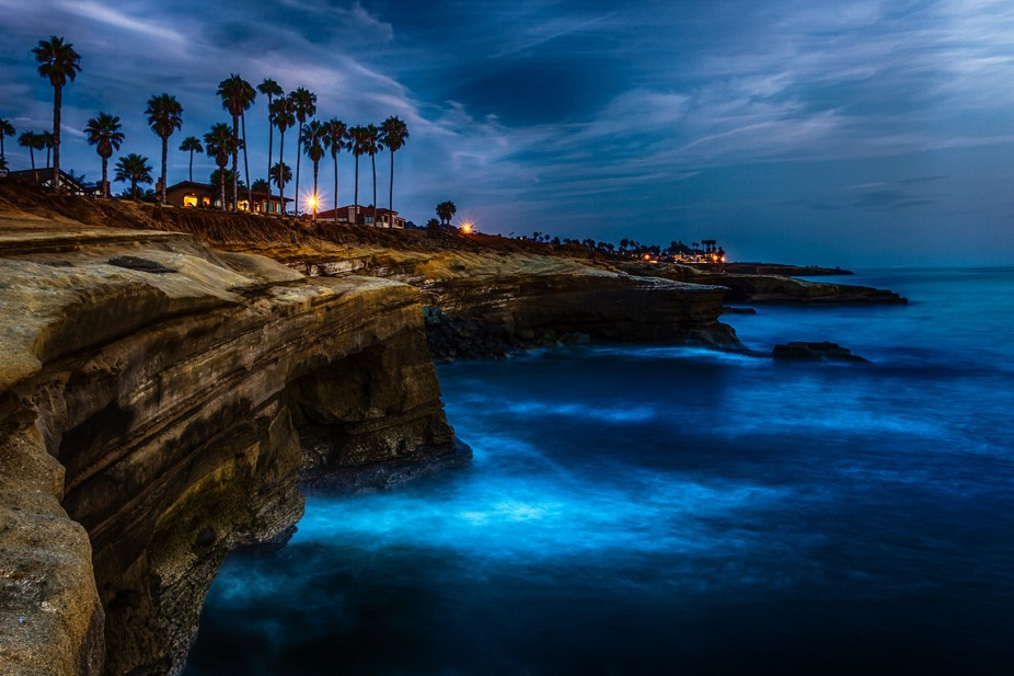 Taken July 2014. Ocean Beach, CA (San Diego)