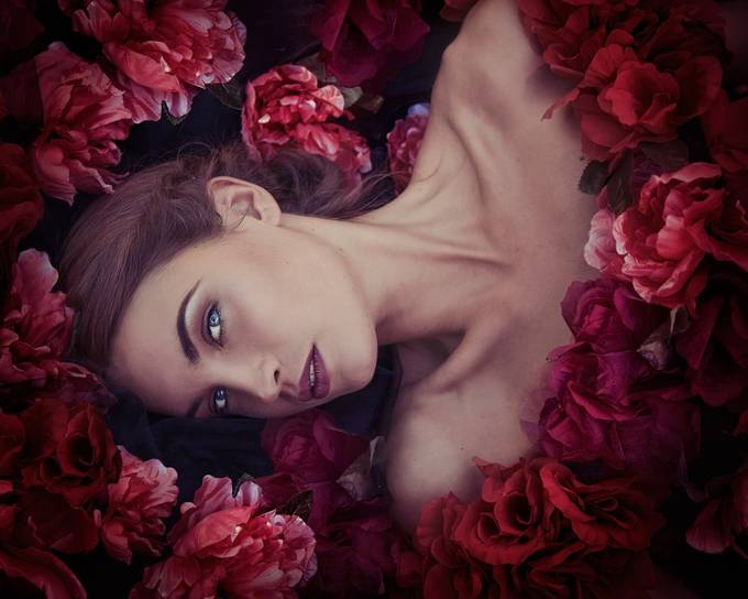 Bed of roses by jennisjberg - My Best Shot Photo Contest Vol 2