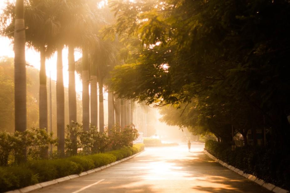 The Thin Light during Sunrise