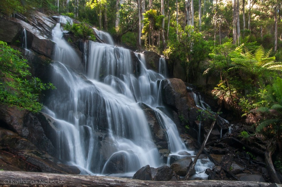 Baw Baw National Park - Victoria - Australia