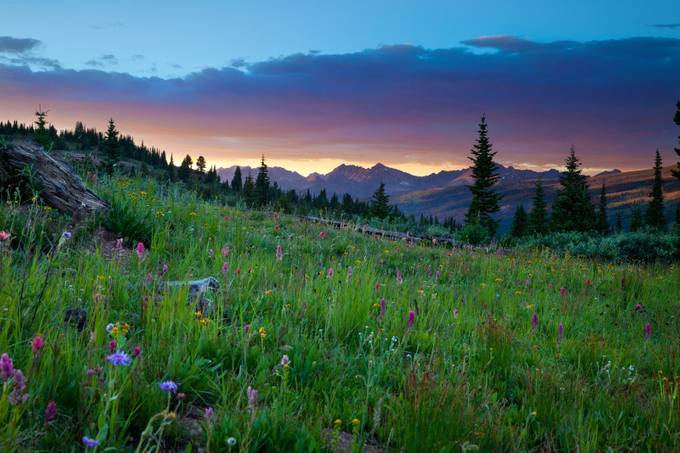Shrine Pass by LindbloomPhoto - Meadows Photo Contest