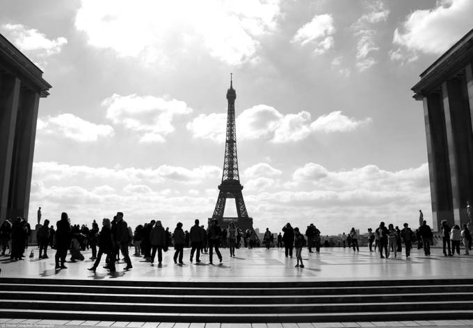 Paris in black and white by nicolecampbell - Paris Photo Contest