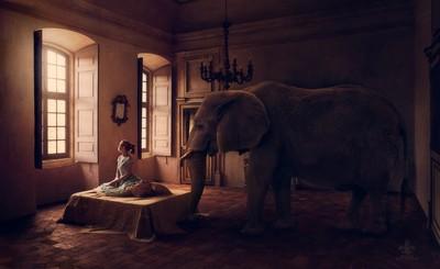 ElephantInTheRoom_Dreamcatcher