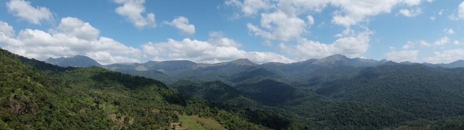 the last resort of woods around kerala-karnataka border untouched by humans.