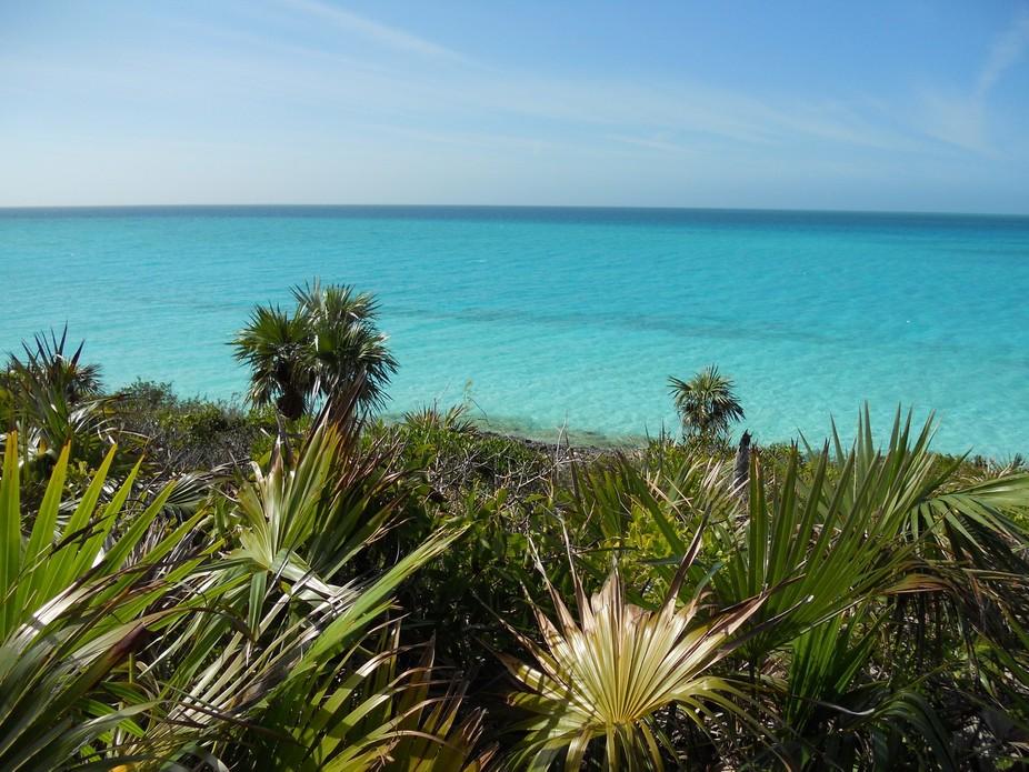Ocean view in the Bahamas.