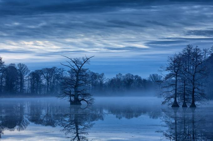 Blue Morning by jbingaman - Shooting The Blue Hour Photo Contest