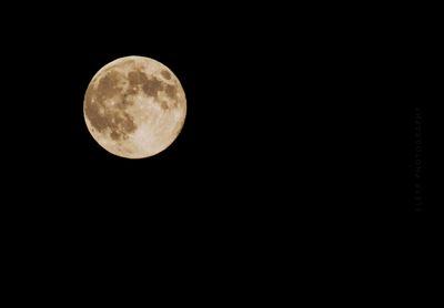 Super Duper Moon, August 10th