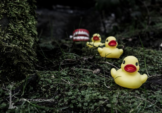 Duck, duck, duck... by FictionalForest - 300 Toys Photo Contest