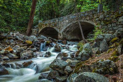 Magical Bridges Photo Contest finalists