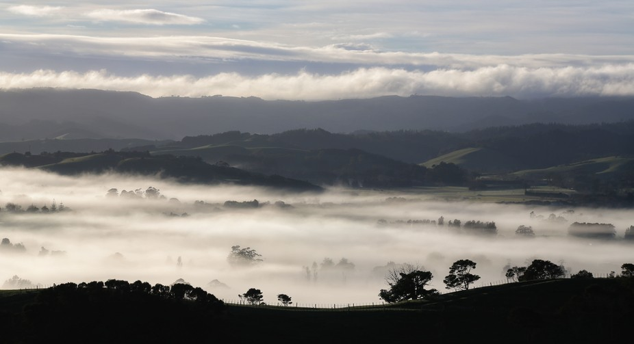 misty morning in Clevedon valley,New Zealand