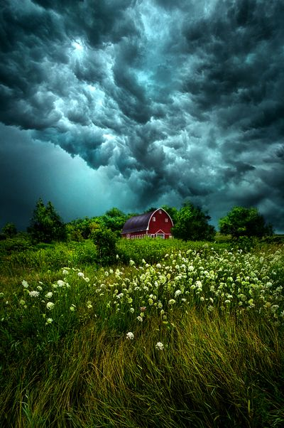 Wisconsin Horizons by Phil Koch. Lives in Milwaukee, Wisconsin, USA. http:--phil-koch.artistwebsites.com by Theo-Herbots-Fotograaf