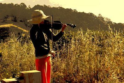 violin in nature