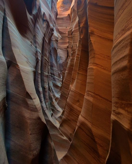 Zebra Canyon, again by RDDow - Twisted Lines Photo Contest
