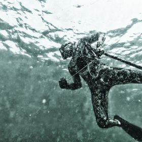 Spearfishing in Fujairah, UAE