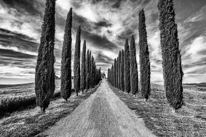 boulevard of broken dreams by ovosphotography - Awesomeness In Black And White Photo Contest