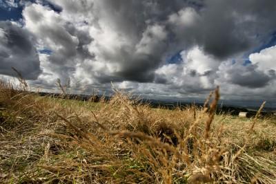 Angry sky over field