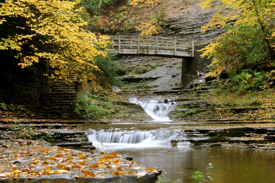 the Falls at Stony Brook Park, Dansville, NY