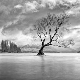 Looking towards Mt Alta from Lake Wanaka (New Zealand) on a gloomy early winter's day.  Copyright (c) 2012 Brad Grove - All rights reserved