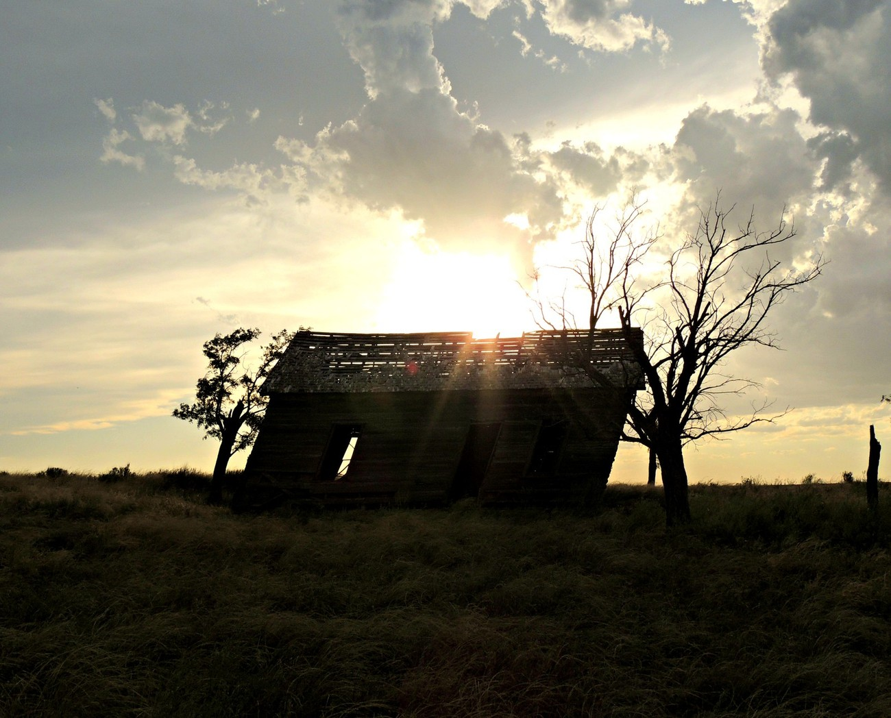 An old barn stands lonely in a pasture.