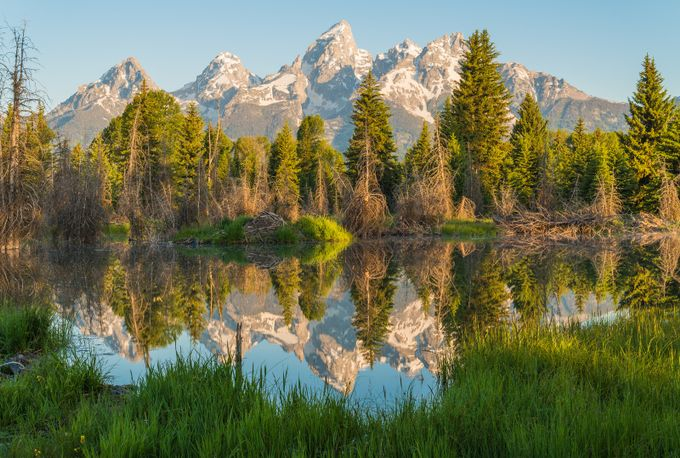 Reflecting on Everything by KGSPhoto - The Nature Lover Photo Contest