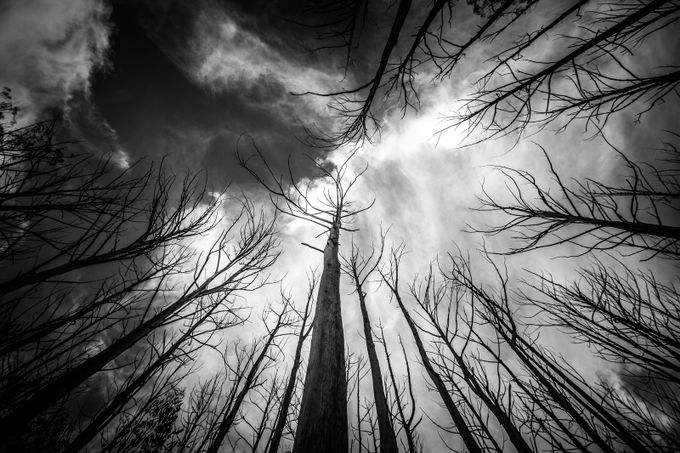 Marysville by adammcclelland - Epic Black and White Photo Contest
