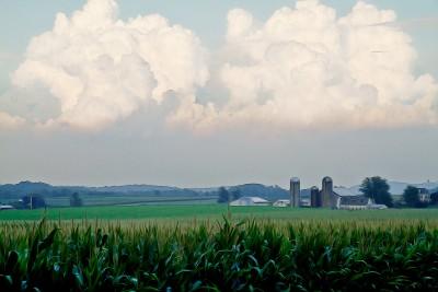 Thunderheads over the Farm