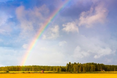 Fields At The Rainbows End