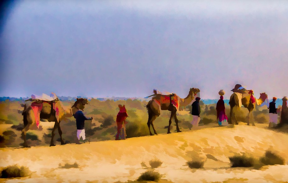 Manvar camels and humans -15