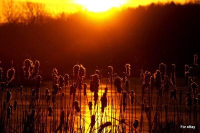 Sun Rise March 2014