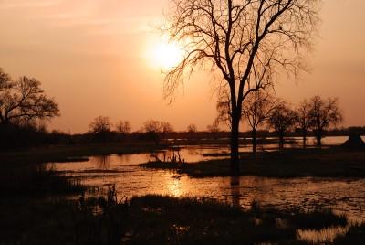 Okavango Paradise