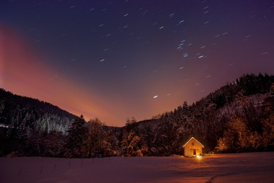 Midnight in the Black Forest