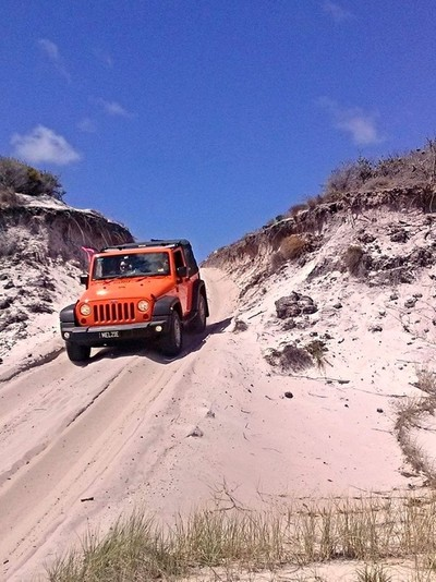 red rover crossing sand dune